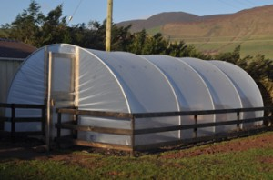 mypolytunnel