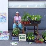 Gretas-Herbs-8